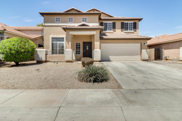 15340 W Laurel Lane, Surprise, AZ 85379 (MLS #5924891) :: CC & Co. Real Estate Team