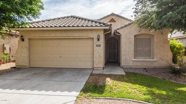 8847 N 181ST Avenue, Waddell, AZ 85355 (MLS #5924892) :: Keller Williams Realty Phoenix