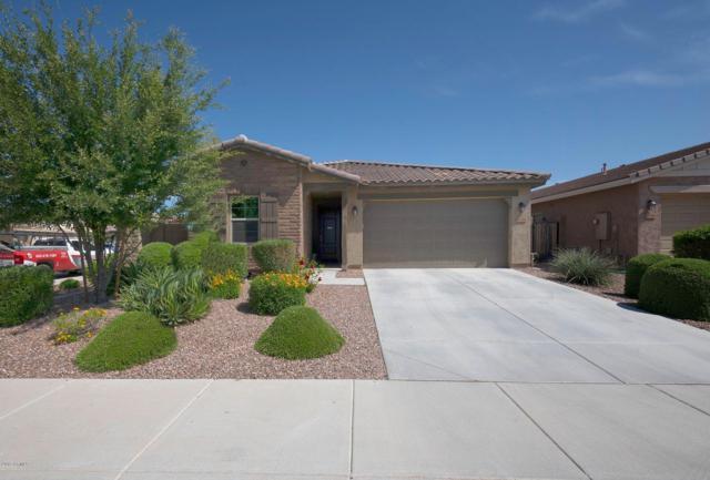 12264 W Prickly Pear Trail, Peoria, AZ 85383 (MLS #5924910) :: Yost Realty Group at RE/MAX Casa Grande