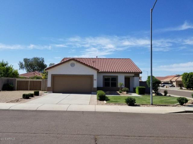 10633 W Villa Chula Drive, Peoria, AZ 85383 (MLS #5924932) :: Arizona 1 Real Estate Team