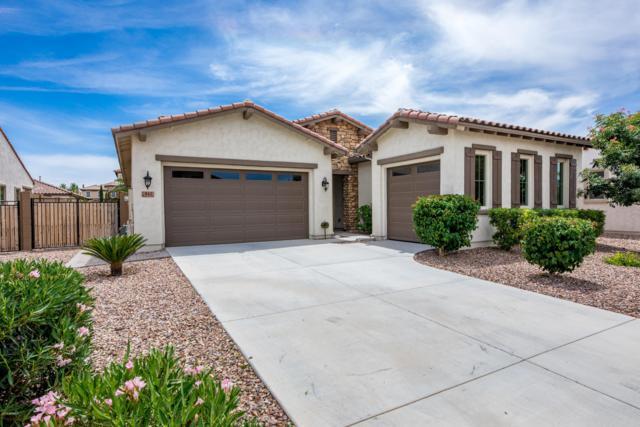 943 E Horseshoe Place, Chandler, AZ 85249 (MLS #5924966) :: Revelation Real Estate