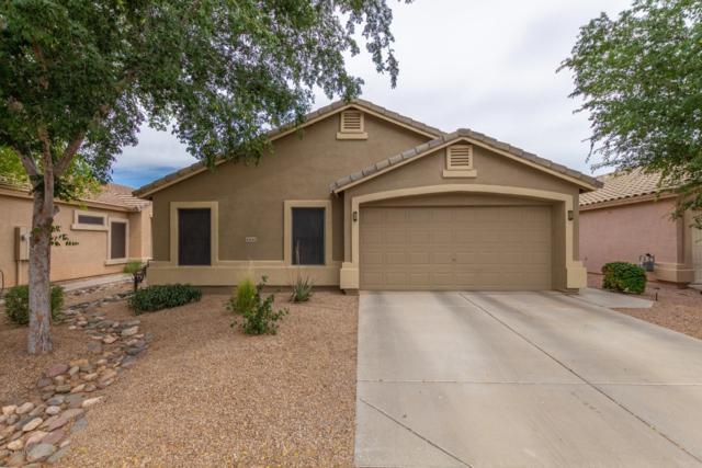 42646 W Michaels Drive, Maricopa, AZ 85138 (MLS #5924979) :: CC & Co. Real Estate Team