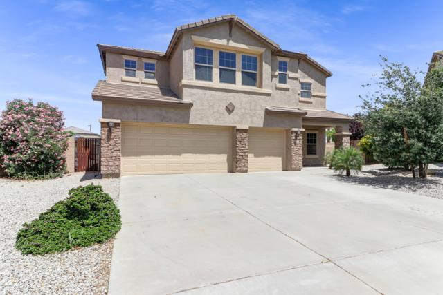 30246 W Mitchell Avenue, Buckeye, AZ 85396 (MLS #5924982) :: Arizona 1 Real Estate Team