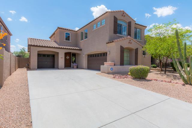 8479 W Coyote Drive, Peoria, AZ 85383 (MLS #5924992) :: The Laughton Team