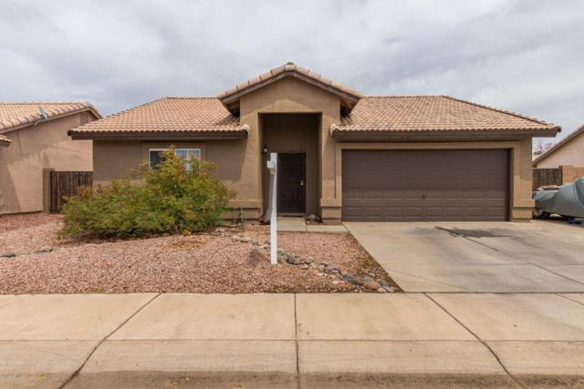 1193 S Anvil Place, Chandler, AZ 85286 (MLS #5925026) :: CC & Co. Real Estate Team