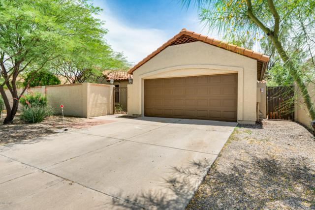5409 W Brown Street, Glendale, AZ 85302 (MLS #5925040) :: The Everest Team at My Home Group