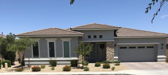 5163 N 145TH Drive, Litchfield Park, AZ 85340 (MLS #5925046) :: CC & Co. Real Estate Team