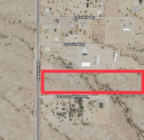 23140 E Cactus Wren Lane, Florence, AZ 85132 (MLS #5925054) :: Devor Real Estate Associates