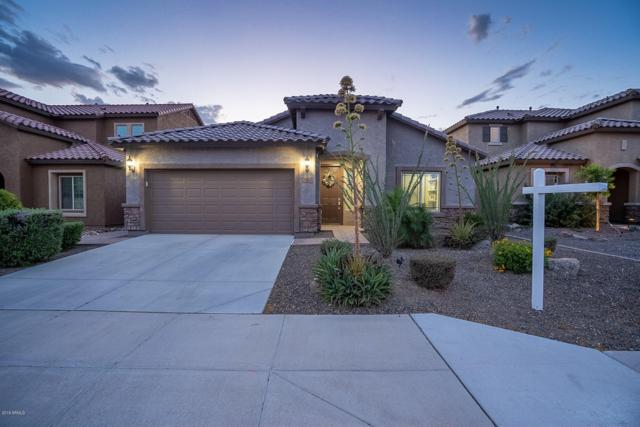 26380 N 107TH Lane, Peoria, AZ 85383 (MLS #5925078) :: CC & Co. Real Estate Team