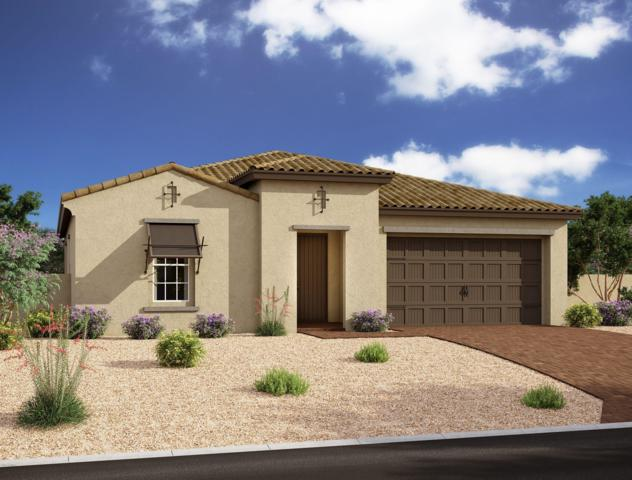 10218 E Supernova Drive, Mesa, AZ 85212 (MLS #5925132) :: The Kenny Klaus Team
