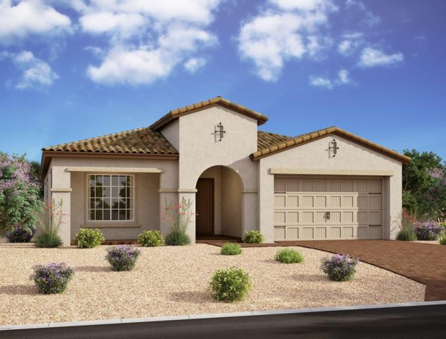 10212 E Supernova Drive, Mesa, AZ 85212 (MLS #5925134) :: The Kenny Klaus Team