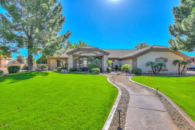 9613 W Camino De Oro, Peoria, AZ 85383 (MLS #5925178) :: Homehelper Consultants