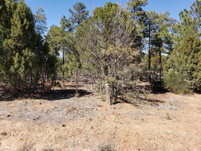 4180 S Sugar Pine Loop, Show Low, AZ 85901 (MLS #5925180) :: The W Group