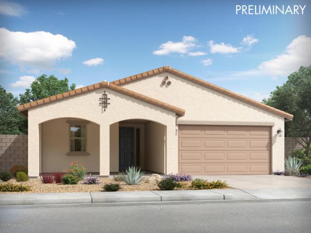 14379 W Eugene Terrace, Surprise, AZ 85379 (MLS #5925243) :: CC & Co. Real Estate Team