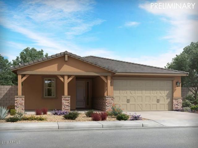 14349 W Eugene Terrace, Surprise, AZ 85379 (MLS #5925266) :: CC & Co. Real Estate Team
