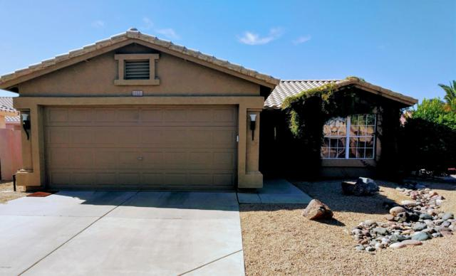11531 W Lizard Court, Surprise, AZ 85378 (MLS #5925284) :: CC & Co. Real Estate Team