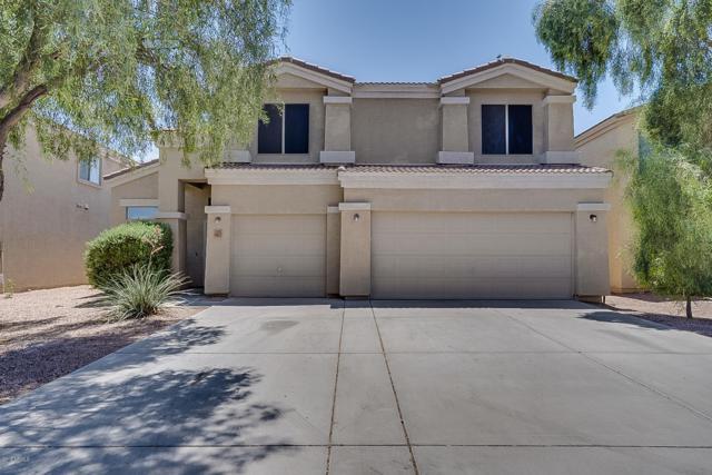 43517 W Blazen Trail, Maricopa, AZ 85138 (MLS #5925316) :: Revelation Real Estate