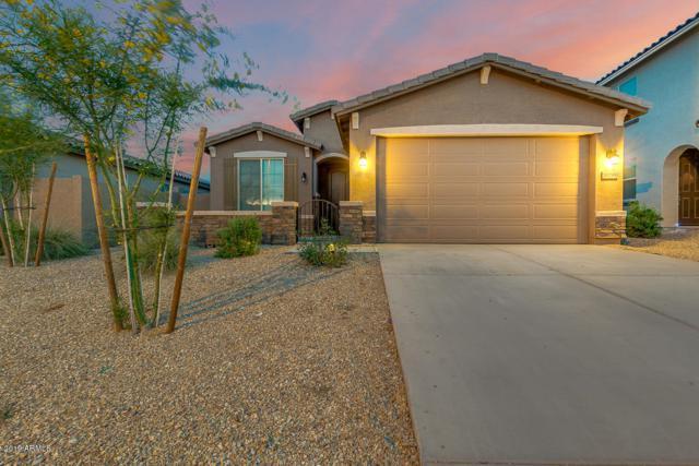 10799 S 174TH Avenue, Goodyear, AZ 85338 (MLS #5925331) :: Brett Tanner Home Selling Team