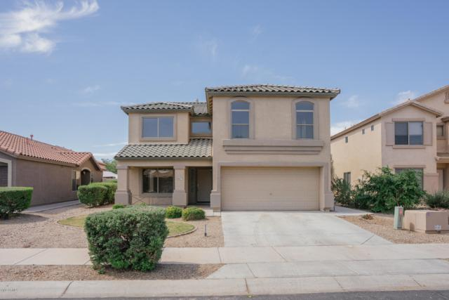 16627 W Fillmore Street, Goodyear, AZ 85338 (MLS #5925335) :: CC & Co. Real Estate Team