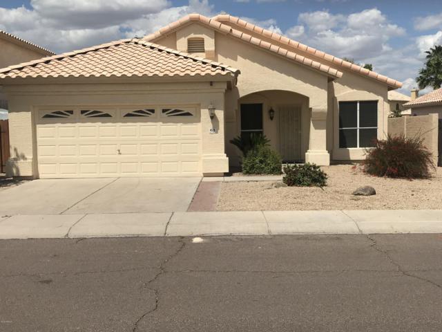 4534 E Dry Creek Road, Phoenix, AZ 85044 (MLS #5925348) :: Yost Realty Group at RE/MAX Casa Grande