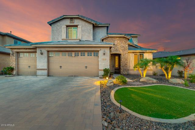 10792 W Whitehorn Way, Peoria, AZ 85383 (MLS #5925350) :: Yost Realty Group at RE/MAX Casa Grande