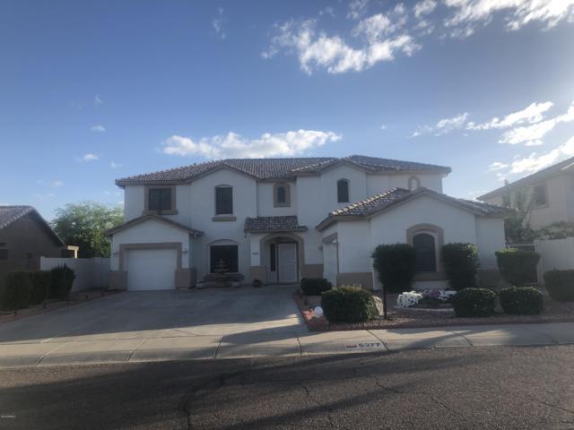 5377 W Belmont Avenue, Glendale, AZ 85301 (MLS #5925367) :: Revelation Real Estate