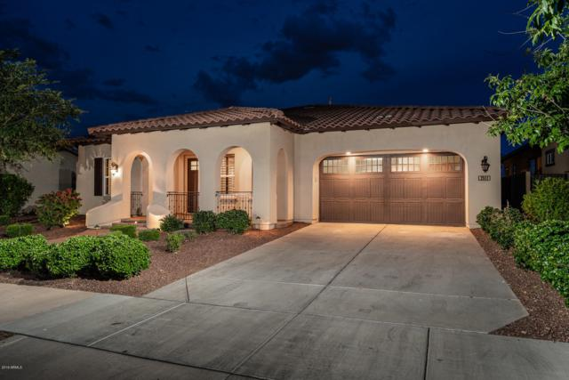 3911 N Evergreen Street, Buckeye, AZ 85396 (MLS #5925384) :: CC & Co. Real Estate Team