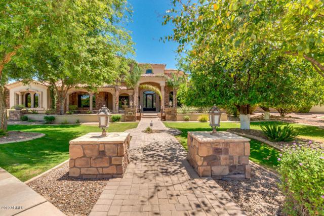 2039 N Pomelo Street, Mesa, AZ 85215 (MLS #5925410) :: CC & Co. Real Estate Team