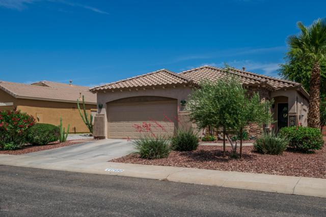 17130 W Desert Lane, Surprise, AZ 85388 (MLS #5925430) :: CC & Co. Real Estate Team