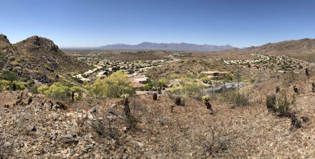 1524 E Desert Willow Drive, Phoenix, AZ 85048 (MLS #5925445) :: Long Realty West Valley