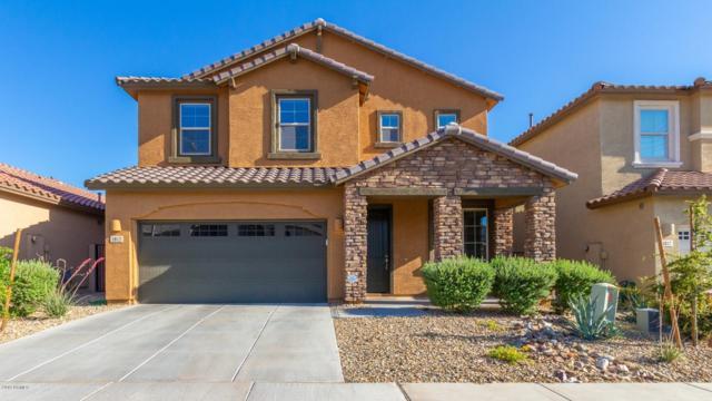 1813 W Lacewood Place, Phoenix, AZ 85045 (MLS #5925446) :: Brett Tanner Home Selling Team