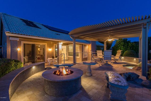 2592 N 134TH Avenue, Goodyear, AZ 85395 (MLS #5925471) :: Kepple Real Estate Group