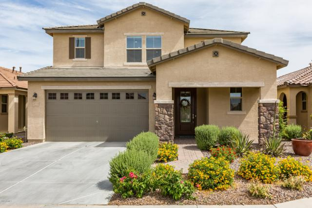 40778 W Tamara Lane, Maricopa, AZ 85138 (MLS #5925485) :: Kepple Real Estate Group
