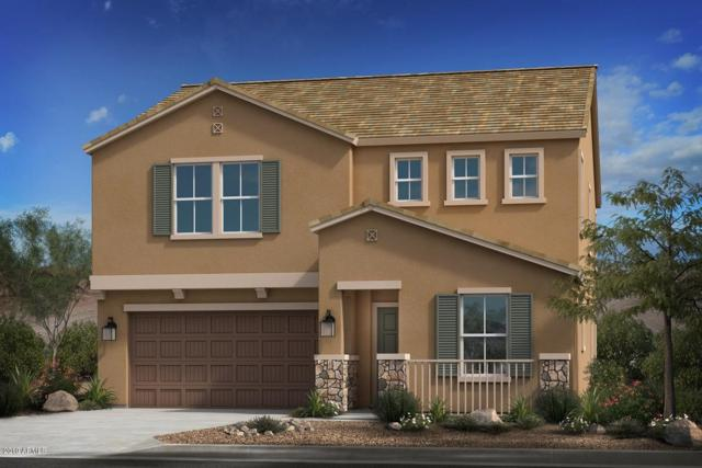 2945 E Flossmoor Avenue, Mesa, AZ 85204 (MLS #5925486) :: Team Wilson Real Estate