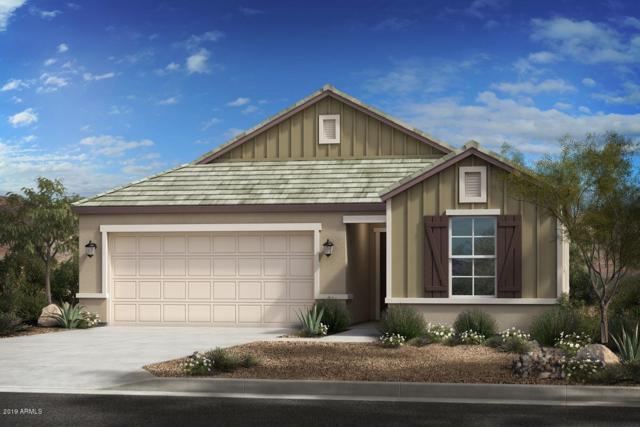 2941 E Flossmoor Avenue, Mesa, AZ 85204 (MLS #5925493) :: Team Wilson Real Estate