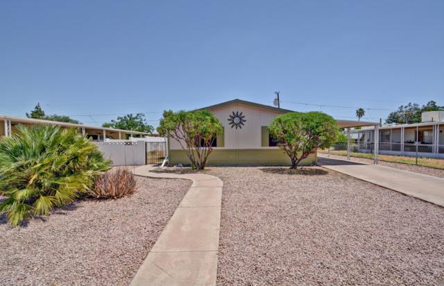 19049 N Mark Lane, Sun City, AZ 85373 (MLS #5925498) :: CC & Co. Real Estate Team