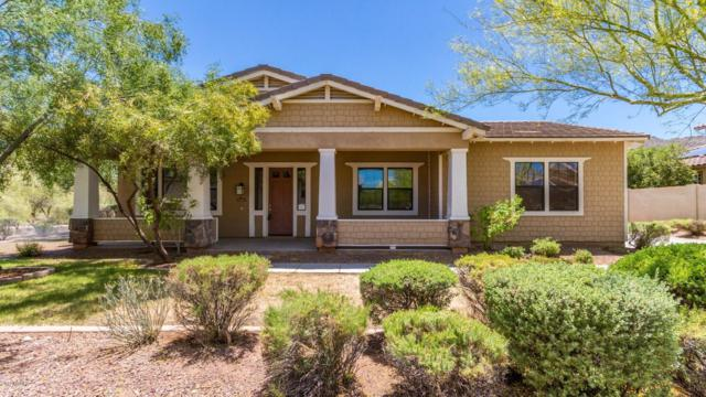 21353 W Mule Deer Way, Buckeye, AZ 85396 (MLS #5925524) :: Riddle Realty