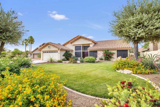 174 W La Vieve Lane, Tempe, AZ 85284 (MLS #5925554) :: Devor Real Estate Associates
