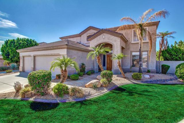 16208 S 16th Lane, Phoenix, AZ 85045 (MLS #5925563) :: CC & Co. Real Estate Team