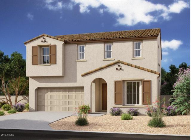 10124 E Rubidium Avenue, Mesa, AZ 85212 (MLS #5925589) :: CC & Co. Real Estate Team