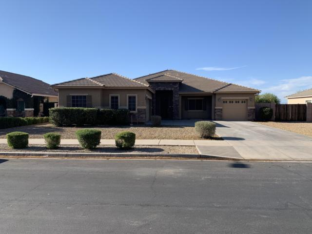 21748 E Escalante Road, Queen Creek, AZ 85142 (MLS #5925592) :: Revelation Real Estate