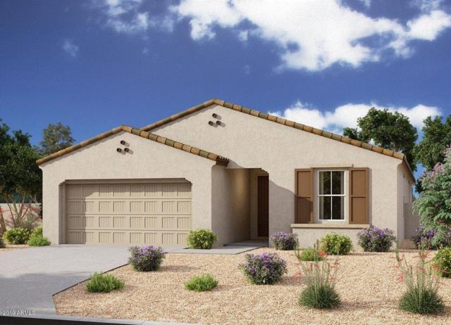 10118 E Rubidium Avenue, Mesa, AZ 85212 (MLS #5925616) :: CC & Co. Real Estate Team