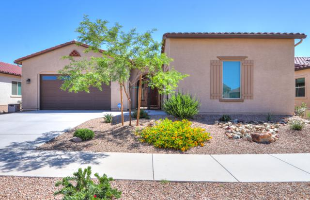 316 N Rainbow Way, Casa Grande, AZ 85194 (MLS #5925617) :: Devor Real Estate Associates