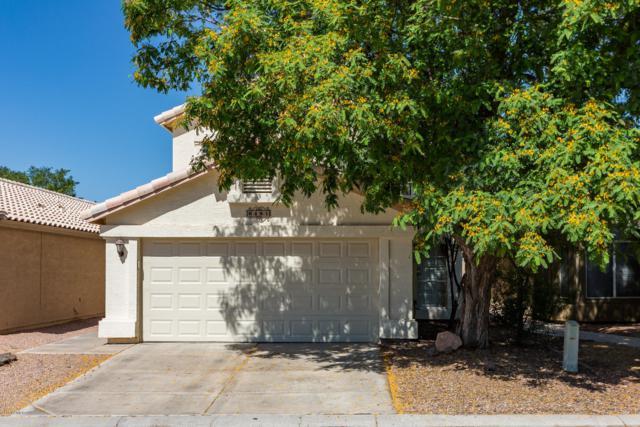 648 N Terrace Road, Chandler, AZ 85226 (MLS #5925626) :: CC & Co. Real Estate Team