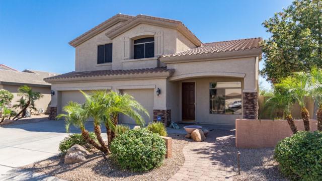 14711 W Clarendon Avenue, Goodyear, AZ 85395 (MLS #5925643) :: CC & Co. Real Estate Team