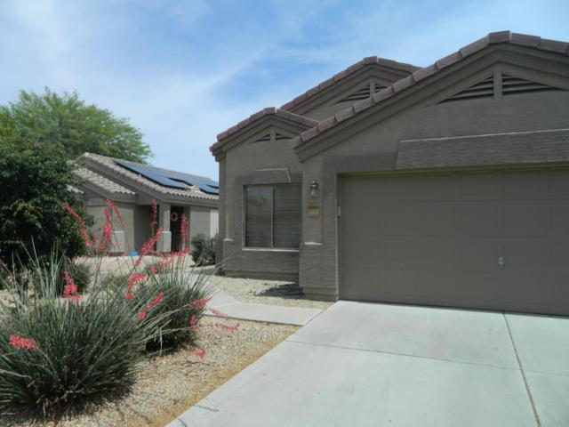14101 N 127TH Lane, El Mirage, AZ 85335 (MLS #5925660) :: CC & Co. Real Estate Team