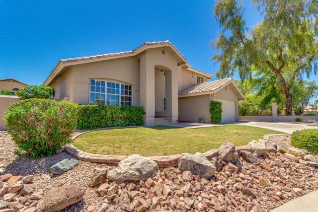 345 E Pinto Court, Gilbert, AZ 85296 (MLS #5925675) :: CC & Co. Real Estate Team