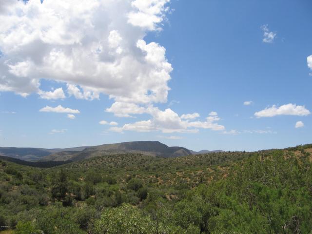 Lot 2 Unit 1-K Fort Rock Ranches, Kingman, AZ 86401 (MLS #5925712) :: The Results Group