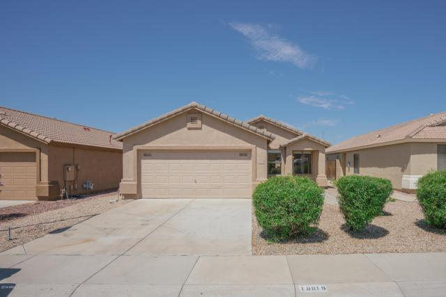 16818 N 113TH Avenue, Surprise, AZ 85378 (MLS #5925768) :: CC & Co. Real Estate Team
