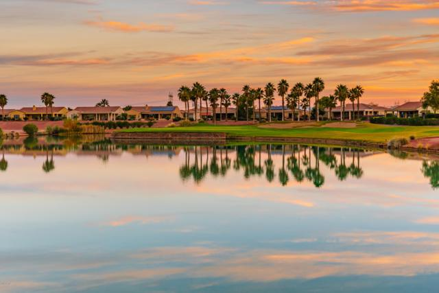 13231 W Junipero Drive, Sun City West, AZ 85375 (MLS #5925825) :: CC & Co. Real Estate Team
